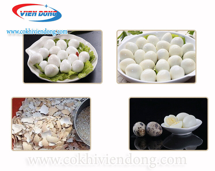 Máy bóc vỏ trứng cút