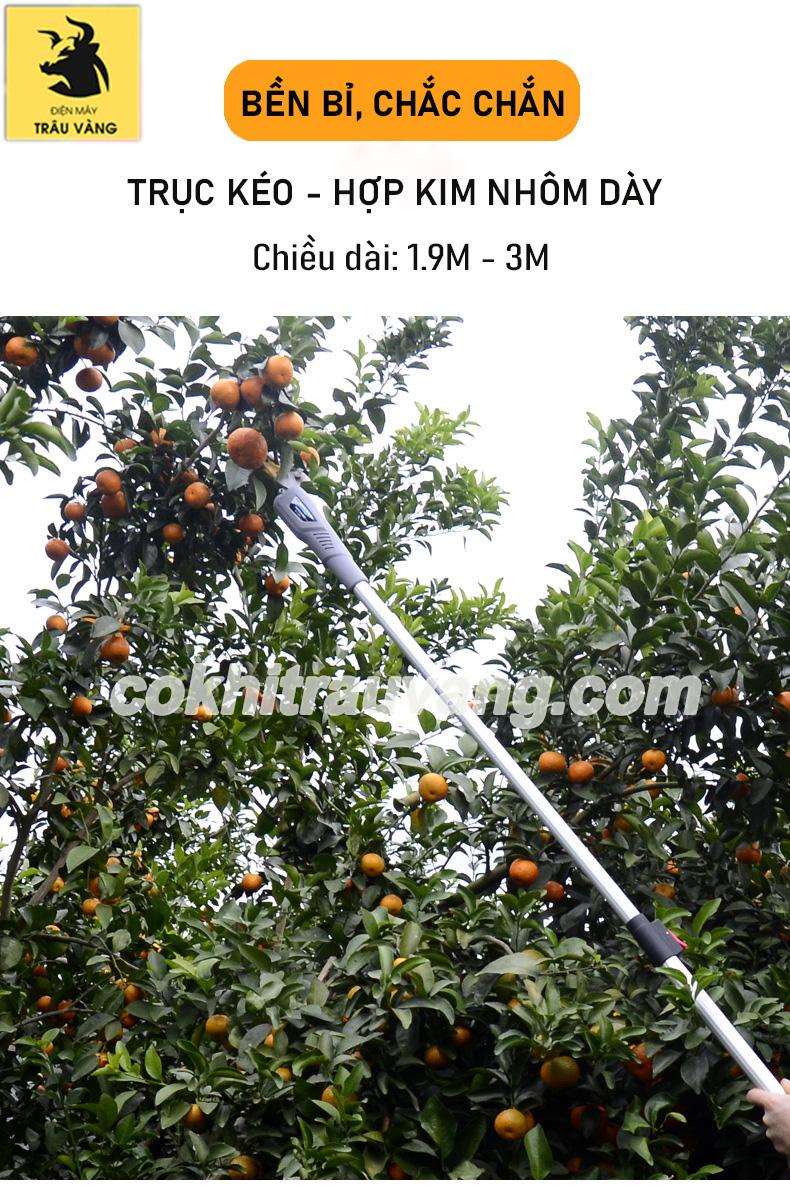 Máy cắt cành cây trên cao